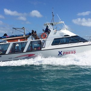 Cruise with Whitehaven Xpress for an amazing Aussie Beach BBQ - steaks cooked to order! More food than you can eat!  Hill Inlet Lookout, Snorkeling & Glass-bottom boat.  Whitehaven Xpress has indoor, semi-outdoor and rooftop seating which is another key difference