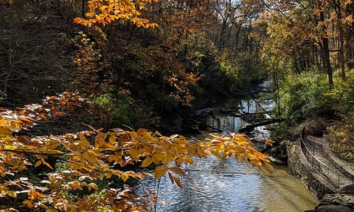 An amazing Fall day walking through the trails of Sharon Woods.