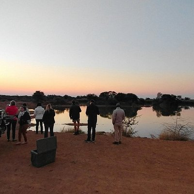 Viewing Hippos at a nearby dam while on safari