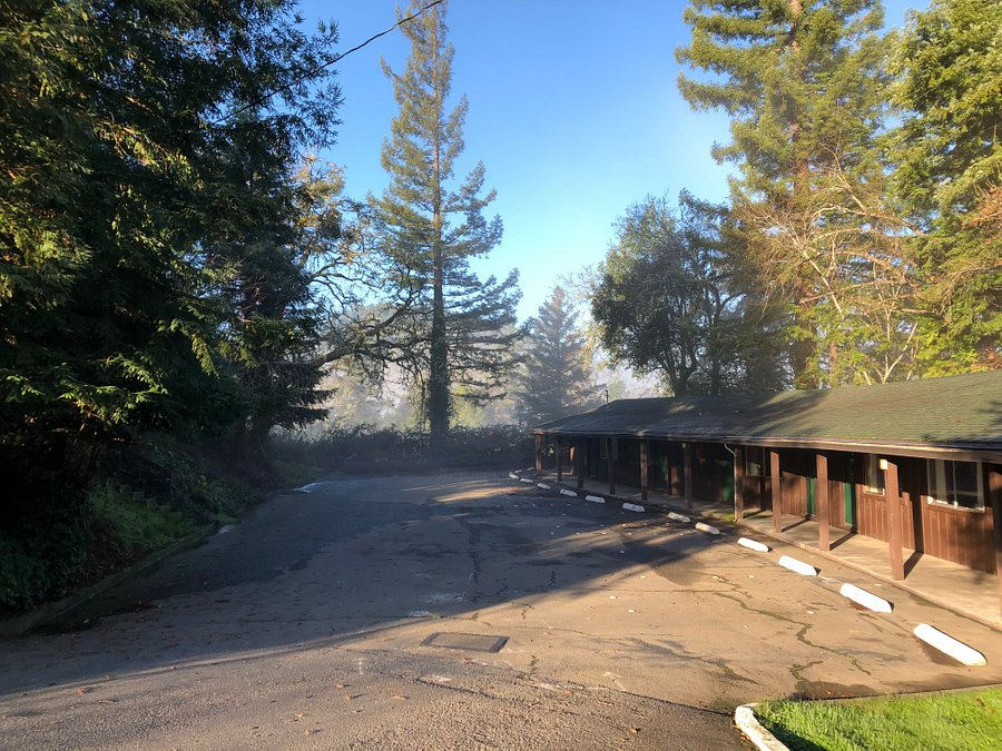 Sherwood Forest Motel Updated 2020 Prices Hotel Reviews Garberville Ca Tripadvisor