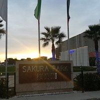 Sakura park in erbil maked by sardar group