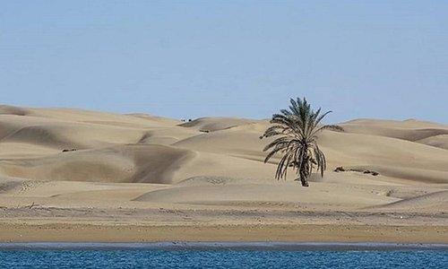 #iran #sistan-o-balochistan #Chabahr #Darak-Beach
