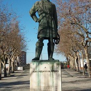 Estatua a Joao Afonso de aveiro