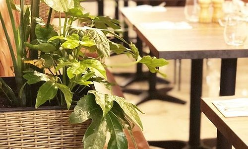 FIO Cookhouse and Bar provides an interior inspired by the Mediterranean ambiance.