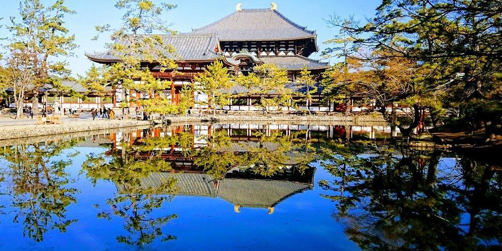 大仏池に映る大仏殿