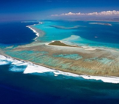 Ténia island
