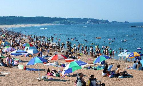 「三陸復興国立公園・種差海岸・白浜海水浴場」鳴き砂の海岸としても知られます。