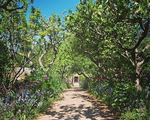 Apple walk in the walled garden