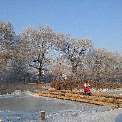 Jilin International Rime Ice and Snow Festival