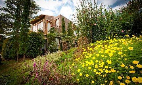 ไปสูดอากาศดีๆ กันที่สวนผึ้ง แต่ได้ฟีลชิลเหมือนอยู่เมืองนอกกันที่ La Toscana Resort รีสอร์สวยของสวนผึ้งที่ตั้งอยู่ท่ามกลางฉากหลังที่เป็นภูเขา แถมด้วยอากาศเย็นสบายตลอดทั้งปี โดยสถาปัตยกรรมสวยๆ ที่ได้แรงบันดาลใจมาจากหมู่บ้านเล็กๆ ของทัสคานี ประเทศอิตาลีค่ะ  https://www.booking.com/hotel/th/la-toscana.en-gb.html?aid=1425179;sid=15904bb2ddd17f786626bd7557554b9e;dist=0;group_adults=2;hapos=1;hpos=1;place_id=ChIJVVVVVVVS4zARcI45QKhv4mQ;place_id_lat=13.5829315;place_id_lon=99.2301017;place_id_ss=La%20To