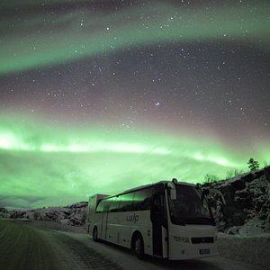 Northern lights all around us!