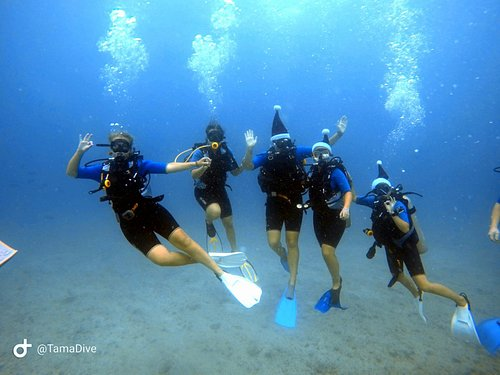 under water group photo