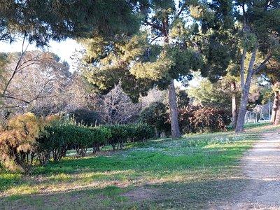 Jardins De Marià Cañardo Lacasta