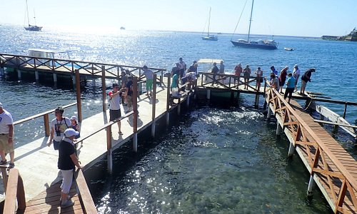 Harbor tour and snorkel excursions available right off the dock. Book directly with us today.