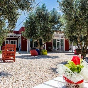 Uno scorcio della corta della nostra Tenuta, un luogo perfetto per il relax tra gli ulivi.