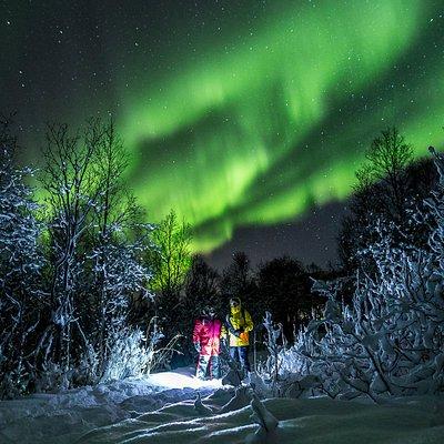 Northern Lights Tour December 2018