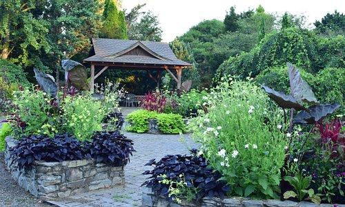Therapy garden & Picnic Gazebo.