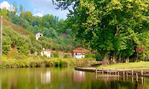 Ribeira da Sertã meanders through the town with pathways enabling scenic strolls.