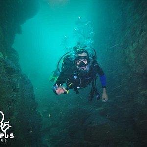 Octopus Divers Chile en Algarrobo
