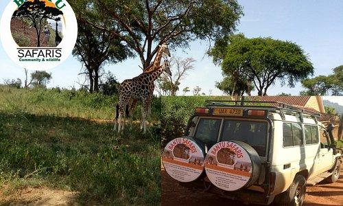 Our Safari 4X4 Vehiche