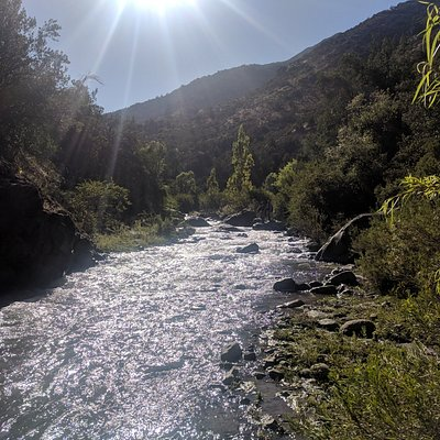 Fly fishing for trout near Santiago