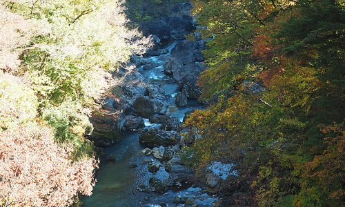 惣岳渓谷(下流側)