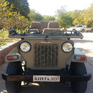 jodhpur desert safari camp