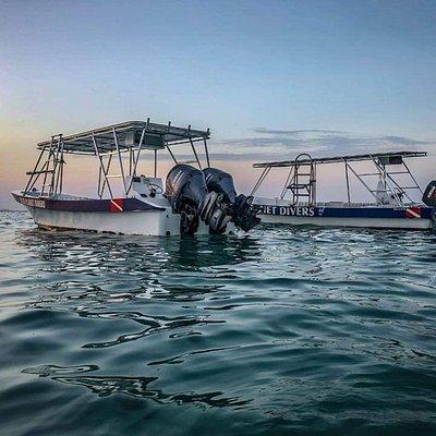 Our sunset fleet!