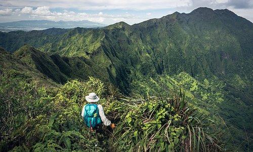 Exploring the beautiful, gree Ko'oalu Mountains