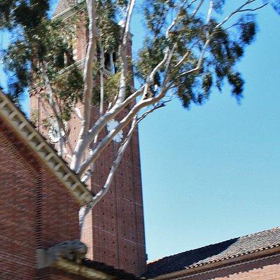 Campanile sopra il museo