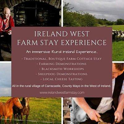 Ireland West Farm Stay Experience