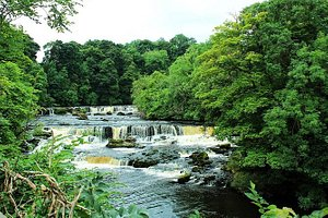Private Group Yorkshire Dales Day Trip from Harrogate