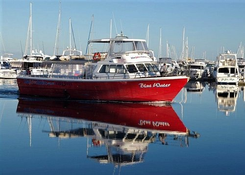 """The Boat """"BlueWater"""" built to travel"""