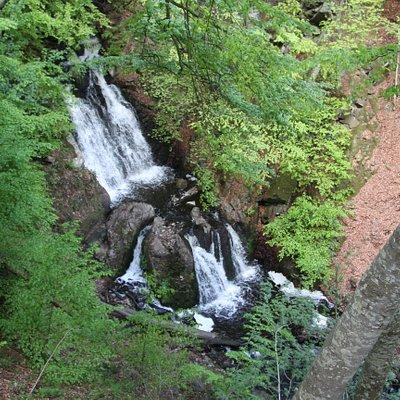 Vattenfalet vid Forsakar sett från utkiksplatsen
