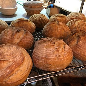 Beautifully scored student loaves from class. Students bring home the loaf they baked in class, plus a banneton with hand-developed dough to bake at home, plus a 10-year old sourdough starter to continue the baking tradition for family and friends!