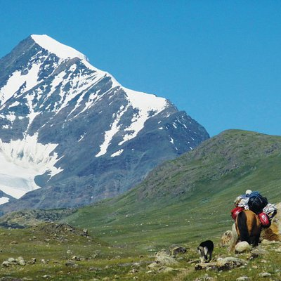 Hiking, horse riding at western Mongolia
