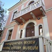 내추럴 히스토리 박물관