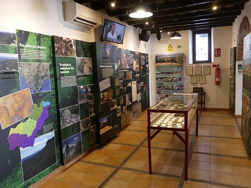 Museum display downstairs.