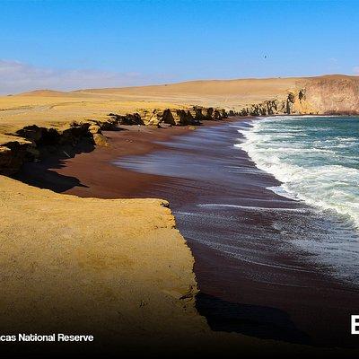 Los colores que convinan con la playa roja en la Reserva Nacional de Paracas, lo convierte en un paisaje unico.
