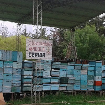 Apìcola Cepida: Federaciòn, Entre Rìos 2019.