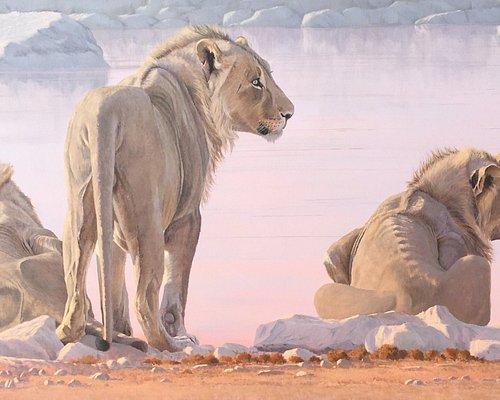 Okevi Boys - by award winning wildlife artist Paul Dixon