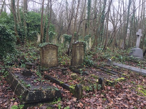 Part of the cemetery that we were searching. Many graves are sinking into the ground - hence the ground is unstable.
