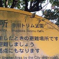 今川トリム公園