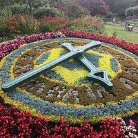 Summer 2018 Morpeth Floral Clock looking fabulous!
