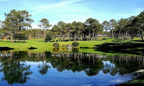 Entorno-Campo de Golf