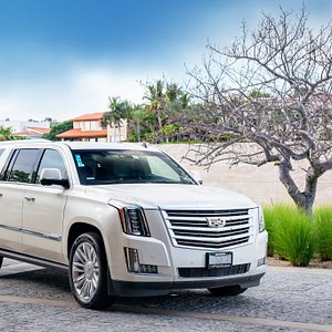 Cadillac Escalades have arrived - Travel in Luxury