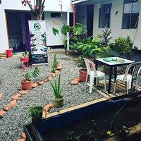 el jardin donde podras comer rodedado de plantas