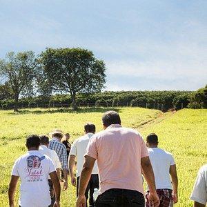 Caminhada na fazenda