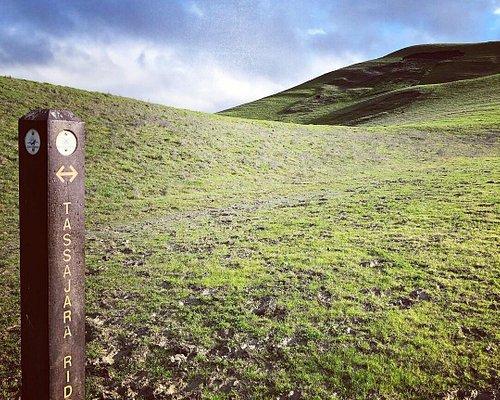 On the Tassajara Ridge Trail