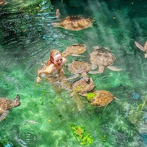 Hai mai nuotato in mezzo alle tartarughe marine?  Mi sono immersa nelle acque dell'acquario Baraka di Nungwi a Zanzibar giocando e nuotando con loro!!! Un'esperienza incredibile assolutamente da provare.